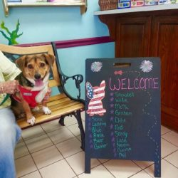 a dog with our welcome sign