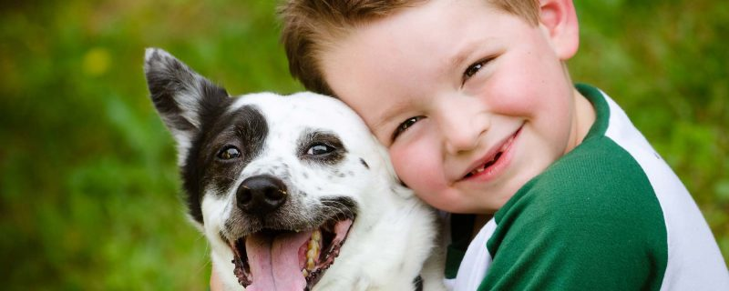 child and pet dog